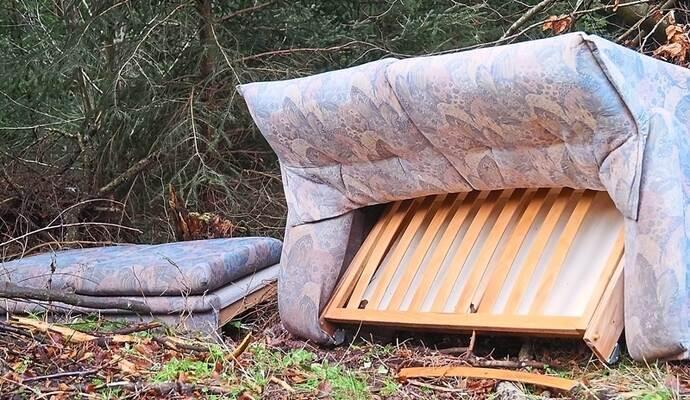 ein sofa liegt im walde landkreis calw besch ftigt. Black Bedroom Furniture Sets. Home Design Ideas