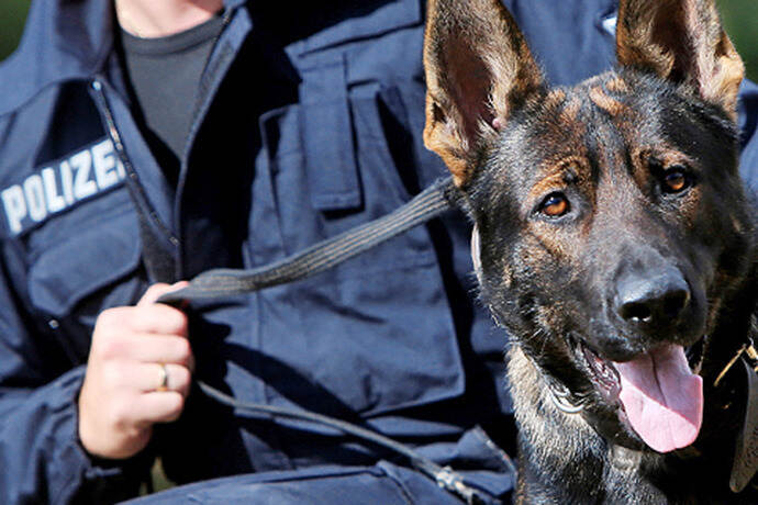 Polizeihundestaffel Pforzheim