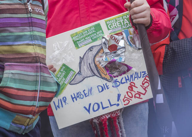 Schülerdemo Fridays for Future 21