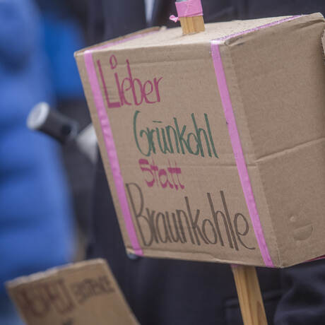 Schülerdemo Fridays for Future 24