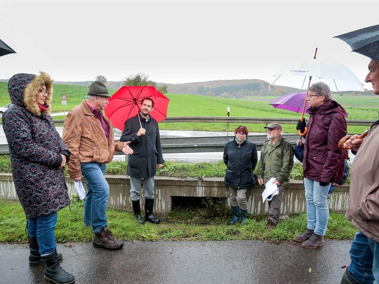 Naturschutz ist mehr als Krötentragen und Bäumepflanzen: Wie Ehrenamtliche in Keltern etwas für die Umwelt tun - Region - Pforzheimer Zeitung